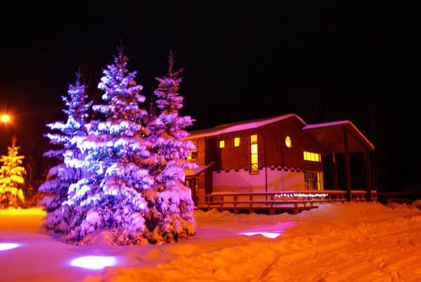 Дома отдыха на новый год в спб